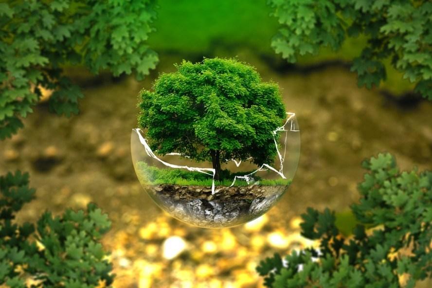 Macam Macam Pengelolaan Lingkungan Hidup