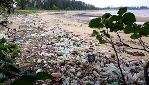 pendapat tentang sampah plastik