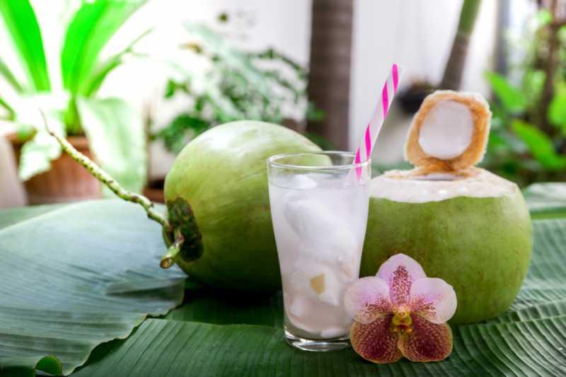 cara membuat es kelapa muda